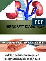 Nefropaty PPT.pptx