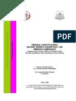TRIBUNAL CONSTITUCIONAL ESTUDIO TEÓRICO CONCEPTUAL Y DE DERECHO COMPARADO