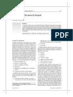 ClasificacionAsma.pdf