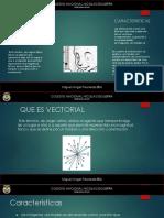 Imiagen Vectorial