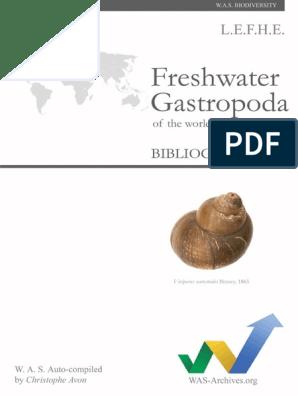 Fascioliasis ökológiai. Opisthorchiasis tabletták: a kábítószerek listája és a használati utasítás