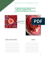 Actividad Practica Embriologia .Estudio Dirigido 2017