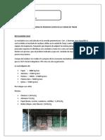 Recicladoras de Residuos Slidos en La Cuidad de Tarija