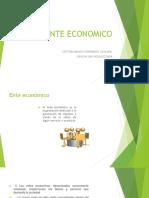 1. Ente Economico