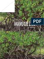 Atlas Dos Manguezais Do Brasil