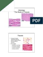 2 Histology