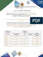 Formato Informes - Química Orgánica Practica 8