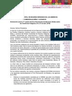 Niñez y juventud indígena - Declaración ante UNPFII17