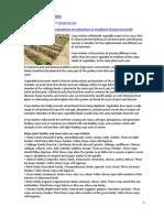Vegetable Crop Rotation&BedCleanup