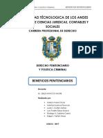 BENEFICIOS PENITENCIARIOS MONOGRAFIA