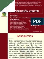 Evolución de Los Vegetales Botánica