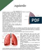 Pulmon Izquierdo