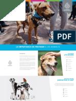 Manual de Protección Animal - Guadalajara 2018
