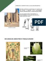 REVISTA-TEMPLOS EGIPCIOS