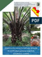 ZAE de Palma de Aceite_Soconusco, Chiapas