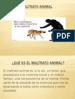 Maltrato Animal Powerp