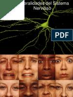 Intro Ducci on Al Sistema Nervioso