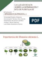 Presentación Oral - Luis Santamaría