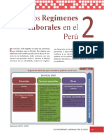 SERVIR El Servicio Civil Peruano Cap2