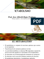 2. Metabolismo Celular