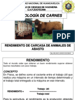 11. RENDIMIENTO CARCASA