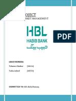 HBL Project.docx