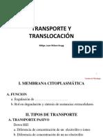 6. Transporte y Translocación