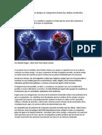 Neurobiología: con un amigo se comparten hasta las ondas cerebrales