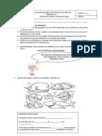 Evaluación General Ciencias Naturales Primero