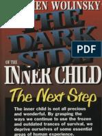 Stephen Wolinsky - Dark Side of Inner Child