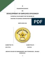 Development of Employee Efficiencey