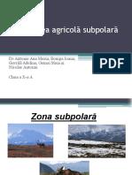 Zona Subpolara