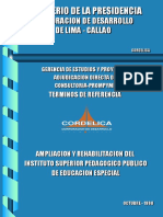 Modelo Para t. r. de Adjudicacion Directa