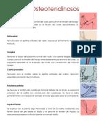 Reflejos osteotendinosos y soma.pdf