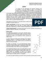3 Lípidos.pdf