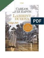 Carlos Ruiz Zafon - Labirint Duhova