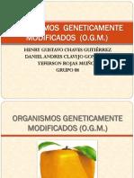Organismos Genéticamente Modificados (O.G.M.).