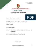 ENSAYO-Derecho Civil I-primer Ciclo