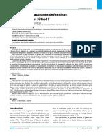 Análisis de Las Acciones Defensivas Del Portero en El Futbol 7