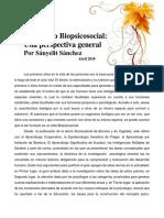 Ensayo Desarrollo Biopsicosocial
