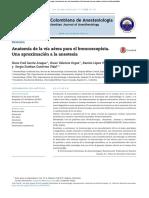 Anatomia de via Aerea Para Fibrobroncopia