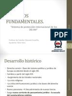 Sistema Intercaional de Proteccion de Los Ddff