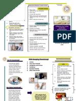 Leaflet Efek Samping Obat Kemoterapi