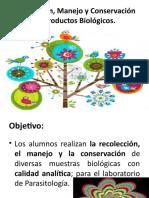 RECOLECCIÓN-MANEJO-Y-CONSERVACIÓN-DE-PRODUCTOS-BIOLÓGICOS.pptx