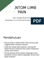 Phantom Limb Pain (2)