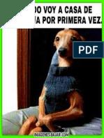 El Perro Chistoso, El Perro Chistoso