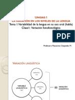 agosto Lengua y variabilidad 1.pdf
