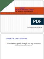 agosto Lengua y variabilidad 4 (1).pdf
