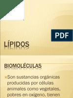 LÍPIDOS2
