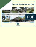 Central Avenue Revitalization Plan Final